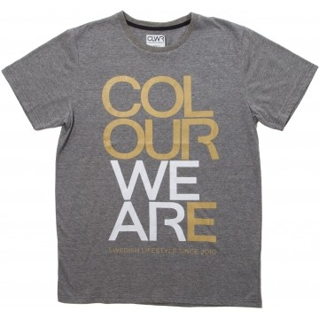 Colour Wear We Are Tee black melange (men)